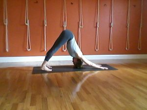 Adho Mukha Svanasana (Down Faced Dog) Fiona Rawson at Phillip Island yoga